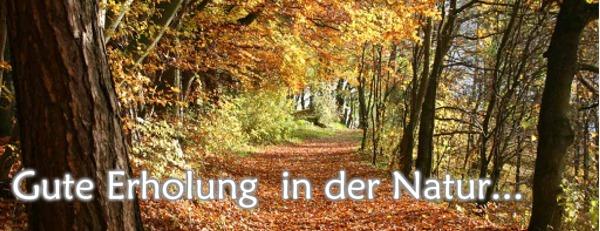 Herbst--Banner2.jpg
