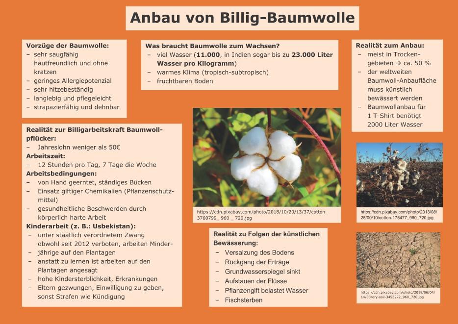 1. Baumwollanbau