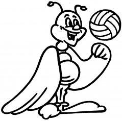 Motte-Ball.jpg